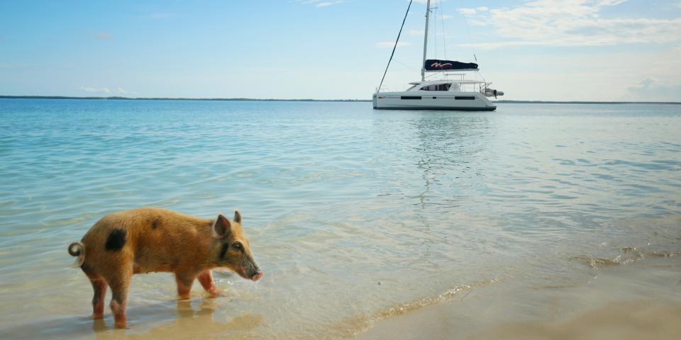 Croisières Et Location De Bateaux Aux Îles Abacos
