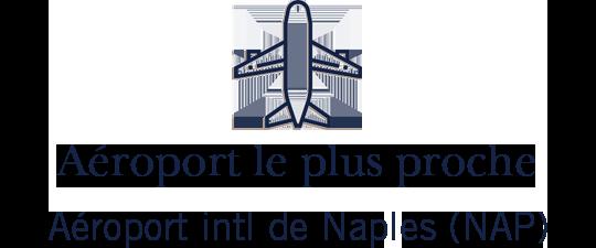 airports-icon-procida-fr.png?t=1PGvz&itok=-_r-VQ0k
