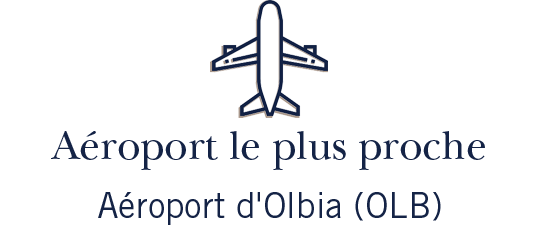 airports-icon-sardinia-fr.png