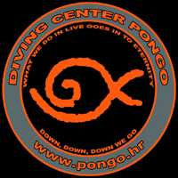 cw_pongo_diving_logo_200x200.jpg?t=1H1An